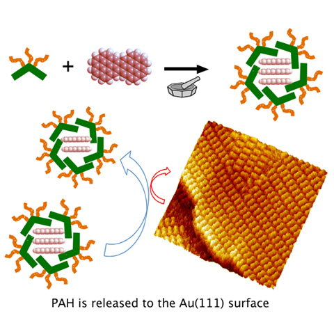 ミセル型カプセルによるナノグラフェンの可溶化と高配向ジコロ二レン単分子膜のSTM像。